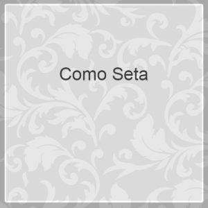 Como Seta